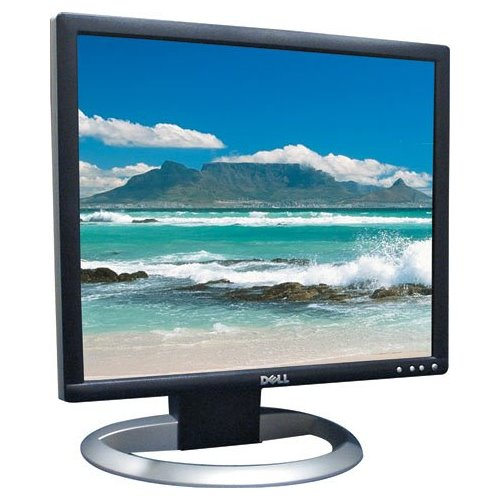 """19"""" TFT DELL UltraSharp 1905FP 800:1 PIVOT DVI-D 4x USB"""