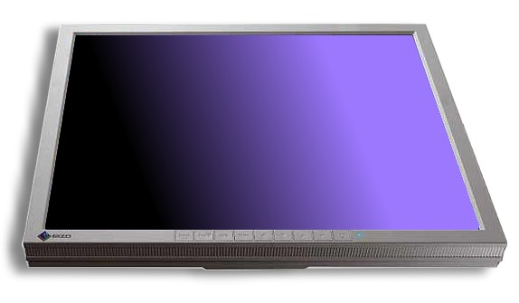 "19"" EIZO FlexScan L788i 1280 x 1024 Monitor ohne Standfuß"