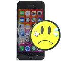Apple iPhone SE C- Ware Glasbruch 64GB schwarz-silber Smartphone ohne SIMlock ohne NT