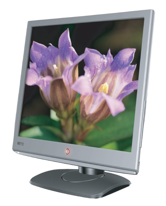 "19"" TFT LCD BenQ E900T 800:1 5ms VGA DVI-D Monitor B-Ware Display-Bildfehler/Kratzer"