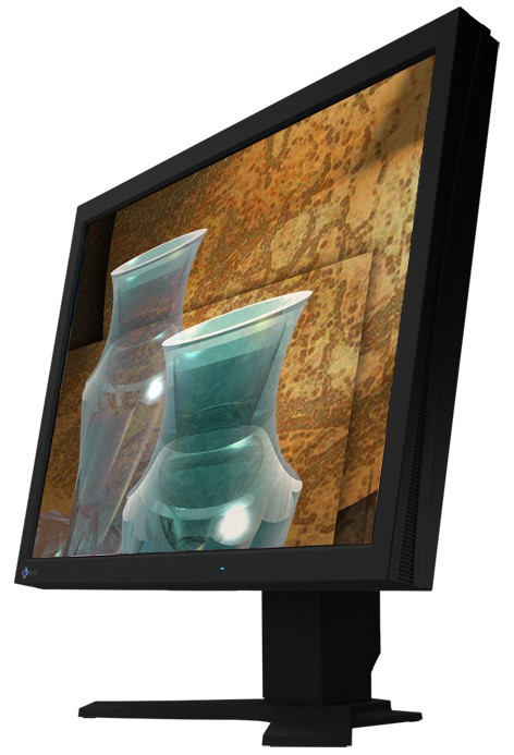"21"" LCD TFT EIZO ColorEdge CG210 2x DVI USB 1600x1200"