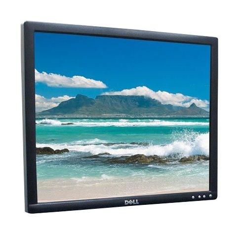 """19"""" TFT LCD Dell UltraSharp 1905FP 800:1 VGA DVI-D USB ohne Standfuß"""
