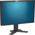 "30"" 29,8 Zoll TFT LCD EIZO ColorEdge CG303W Pivot 2560 x 1600 IPS Monitor WQHD"