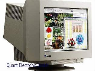 "21"" CRT Monitor Eizo FlexScan F77S 110kHz 160Hz BNC"