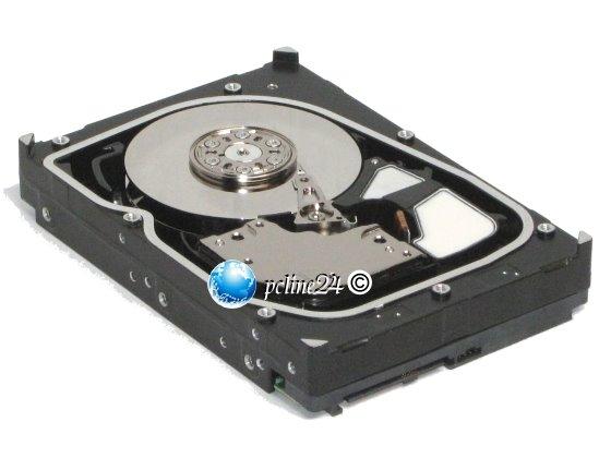 Hitachi 300GB 15K SAS 6Gb/s HUS156030VLS600 Ultrastar 15K600 Festplatte HDD