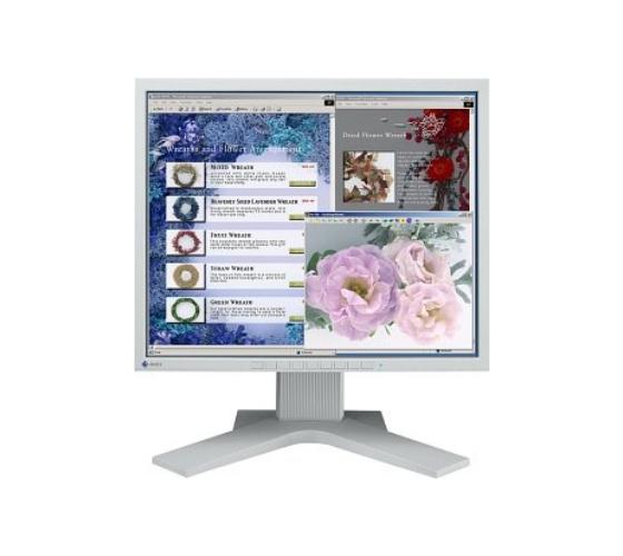 """19"""" TFT-Monitor EIZO L768 TCO""""03 DVI-D 1000:1 grau vergilbt"""