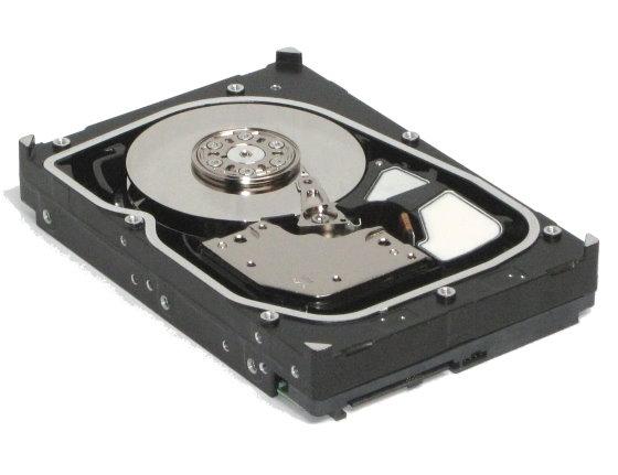 Seagate ST3300655SS 300GB SAS 3Gb/s Cheetah 15K.5 HDD Festplatte