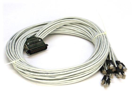 TKM Hydra-Kabel 50-polig Telco Champstecker auf 12x RJ-45