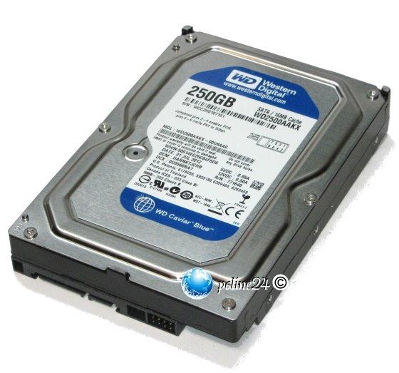 Western Digital 250GB SATA III 6Gb/s WD2500AAKX 7.200 rpm HDD Festplatte